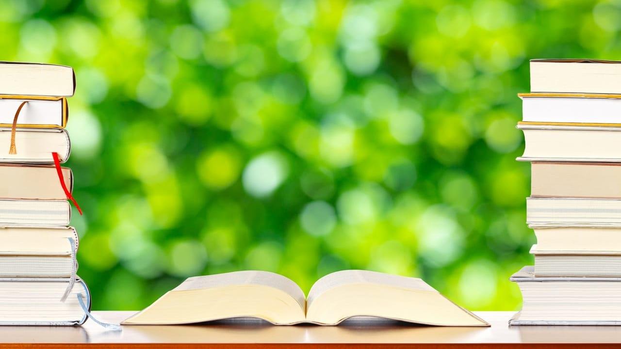 祖手で本を読む